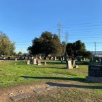 Community Call to Action:  Save Woodlawn Cemetery